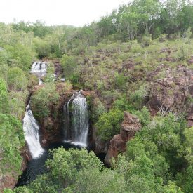 Litchfield National Park (Northern Territory, Australië)