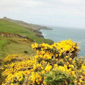 Pembrokeshire Coast Path (Wales)