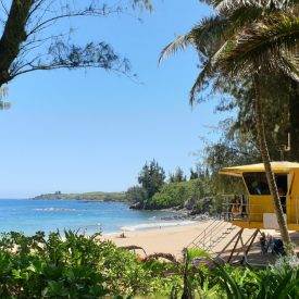 Snorkelplekken op Maui (Hawaii)