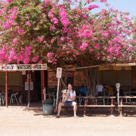 Daly Waters Pub (Northern Territory, Australië)