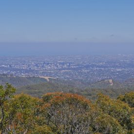 Mount Lofty (Adelaide, Australië)
